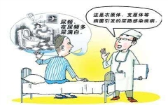 尿路真菌感染吃什么药?随意用药的四大后果