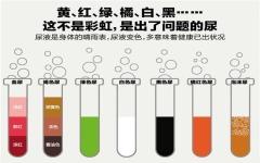 前列腺炎对尿液的影响?三大变化敲响警钟