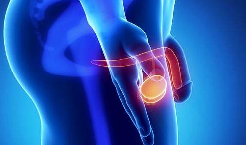 蛋蛋疼是为什么?淮安哪里治疗睾丸疼痛靠谱?