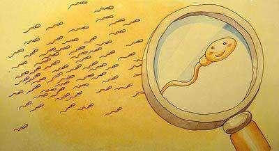 淮安哪里可以做精子检查 你知道流程是怎样的吗